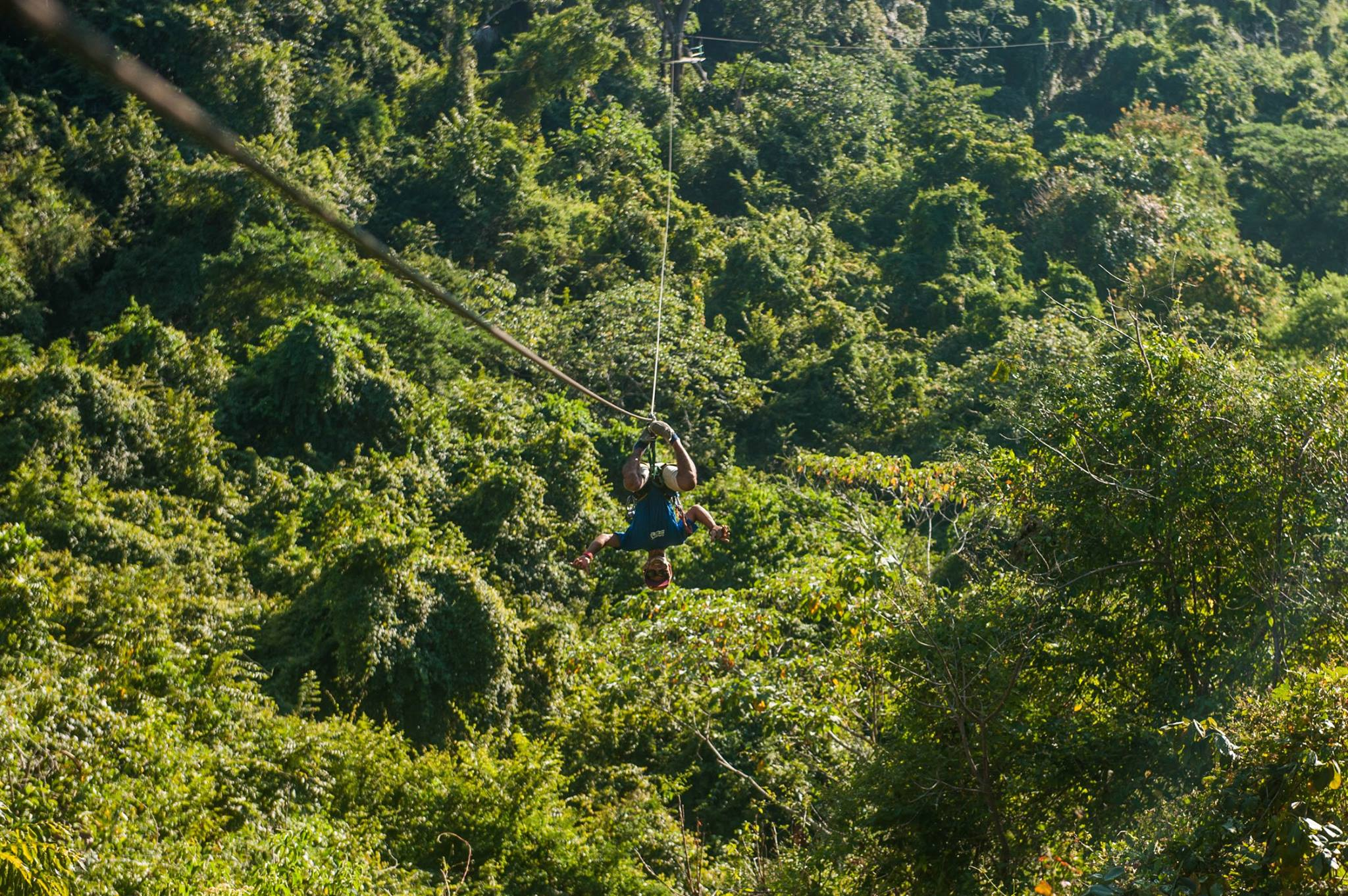 They will introduce you to the fascinating secrets of the forest.Following the strictest safety norms you will enjoy thrilling views of the Pacific Ocean ... & Canopy Mal Pais - Indigo Yoga Resort